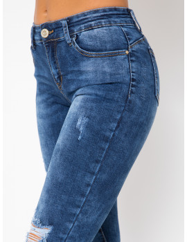 Diana Embroidered Skinny Jeans